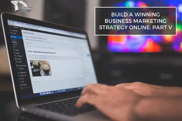Build Winning Business Marketing Strategy Online Part V by Scope Design