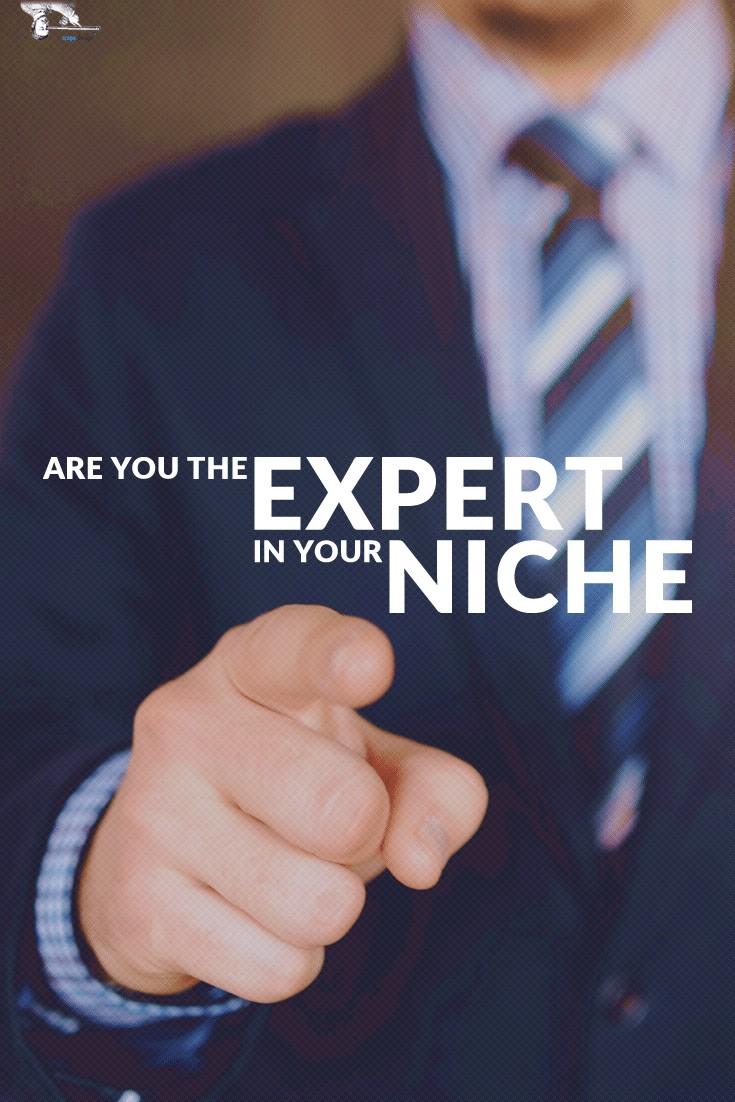 NicheExpertMaterialPin